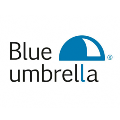 Basics of the Dutch income tax - Blue Umbrella